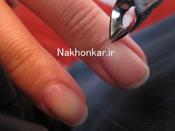 نیپر ناخن ,معرفی ایزار کاشت ناخن,ابزار لازم برای کاشت ناخن ,آموزشگاه کاشت ناخن در تهران